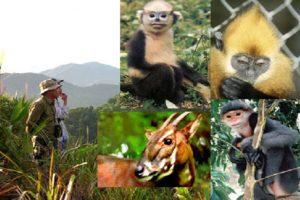 Kiểm kê đa dạng sinh học và đề xuất các biện pháp bảo tồn vùng dự án Bảo tồn Đa dạng sinh học ở dãy núi Bắc Trường Sơn (Hương Sơn, Hà Tĩnh)