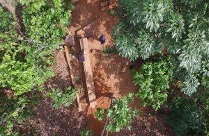 Các nước châu Phi hành động tạo ra các chính sách khuyến khích giảm khai thác gỗ bất hợp pháp thông qua nhu cầu thị trường trong nước