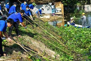 Những vấn đề môi trường cấp bách của Việt Nam, thực trạng, xu thế, thách thức và giải pháp